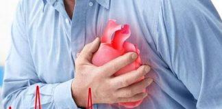 thiếu máu cơ tim nên ăn gì